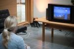 I vår lounge fanns retrohörna med bl.a. Nintendo 8-bitars med Super Mario Bros